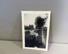 Vtg 30's 40's Photo Snapshot Child German Spitz American Eskimo Dog?