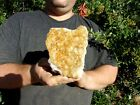 Citrine+Crystal+Cluster+Display+Stand+Specimen+Collected+from+Brazil