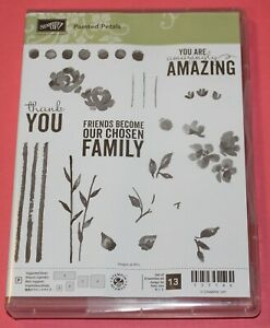 LIKE NEW - Stampin' Up! 13 Piece Painted Petals Photopolymer Clear Stamp Set
