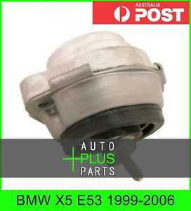 Fits BMW X5 E53 1999-2006 - Front Engine Motor Mount Rubber Hydraulic