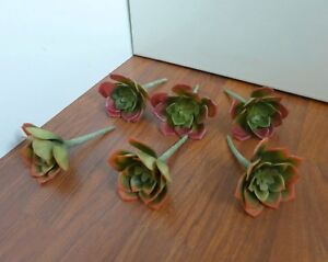 Set of 6 Small Snow Lotus Artificial Plastic Desert Succulents Grass(2 colors)