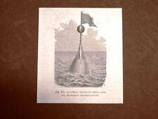 Incisione del 1875 Invenzione Il telegrafo Gavitello usato per la posa
