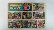 AMAZING SPIDER-MAN Newspaper Comic Strip               Sunday December 31st 1978