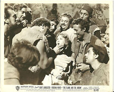 Virginia Mayo Burt Lancaster Original Press Photo from The Flame & The Arrow