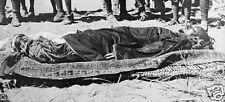 Ali Dinar Last Sultan of Darfur Sudan 1916 World War 1 7x3 inch Reprint Photo