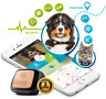 Smartphone GPS para Perro Gato Mascota Buscador Tracker GPS Localizador Collar