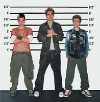 Busted - Busted (NEW CD)