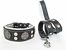 Leather collar & leash SET. studded. soft padded. large breeds. Made in Europe!