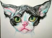 Tuxedo Devon Rex cat art,watercolor painting on paper Pet lover best  gift