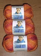 lot of 3 Skeins of Lion Brand Tweed Stripes Yarn, Wildfire