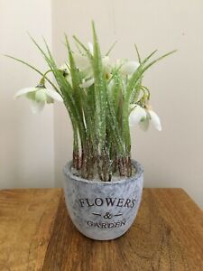 """""""NEW"""" """"Flowers & Garden"""" White Frosted Snowdrop Artificial Flower"""