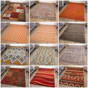 Modern Terracotta Orange Shaggy Rugs Soft Non Shed Wear Resistant Cheap Area Rug