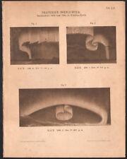 1894 Belle lithographie aurore boréale polaire île de Baffin Canada Astronomie