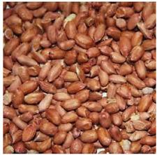 More details for peanuts wild bird 15kg premium food safe fresh nuts by maltbys' stores 1904 ltd.