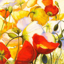 "Poppies up Close by Shirley Novak 30"" x 30"" Canvas or Art Paper Print"