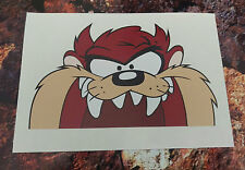 Taz Devil Peeping window/car/van decal sticker JDM