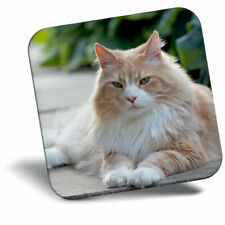 AC-105CB White Norwegian Forest Cat Christmas Tree Bauble Decoration Gift