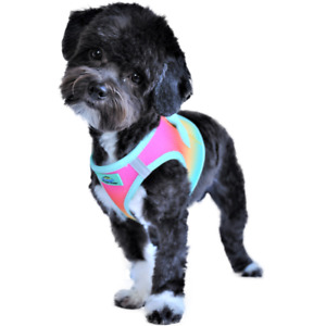 American River Beach Party Choke Free Dog Harness Ombre Collection -  XXS-3XL