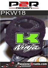 Kawasaki Ninja 250 300 ZX-6r 636 Polsino copri serbatoio olio freni moto verde