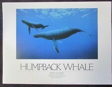 Humpback Whale By Mike Patrick Print 1986