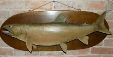 Vintage Lake Trout This Fish From Great Lakes Real Skin Over 36 Inches Long
