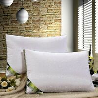 2PC. Mulberry Silk Queen White Orthopedic Multifunction Sleeping  Neck Pillows