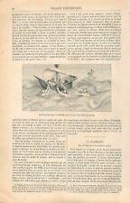 La pêche aux Cauris Miniature du Livre des Merveilles/Flamant & Nid GRAVURE 1866