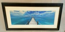 """ICONIC Peter Lik """"Beyond Paradise"""" 1.5 Meter Framed Limited Edition #'d/950 COA"""