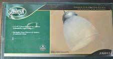 "Hunter Light Kit #28891 For Ceiling Fan Set Of 4 2 1/4"" Glass Accessories"