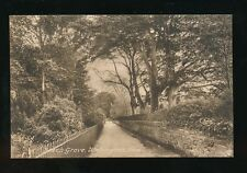 Somerset WELLINGTON Beech Grove c1920/30s? PPC by Frith