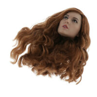 1/6 Female Head Sculpt with Brown Hair for 12'' Action Figure Hot Toys Kumik