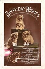 POSTCARD   CATS   Kittens  Birthday  Wishes