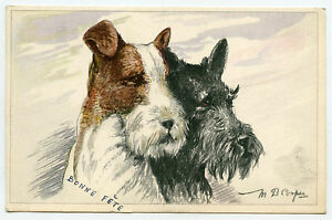 Illustrator M.B.Cooper Chiens Dogs. Scottish Terrier. Fox Terrier