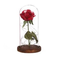 Enchanted Forever Rose Flower In Glass LED Lighted Wedding Decor Festival Gift