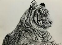 Original ink & pencil art tiger big cat contemporary realism modern home decor