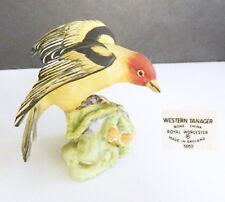 Royal Worcester WESTERN TANAGER Bird Figurine #3650, Mint