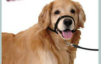 Dog Pet Puppy Training Obedience Recall Lead Leash Walk Mouth Cover 2019