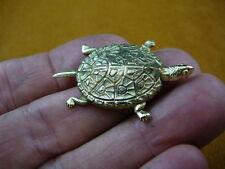 (B-Turt-250) little Map Turtle love pond turtles reptile pet brass pin pendant