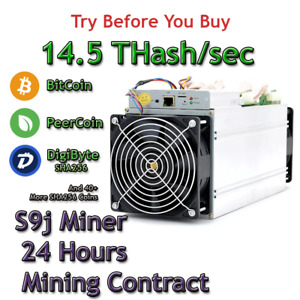 bitcoin įvadas crypto kainos avarija