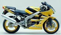 KAWASAKI 2 STAGE TOUCH UP PAINT KIT ZX6R J2 2001 PEARL CHROME YELLOW.