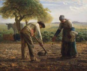 Jean Francois Millet Potato Planters Poster Reproduction Giclee Canvas Print