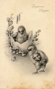 CPA   Joyeuses Pâques -Illustrateur à déterminer- / Poussins