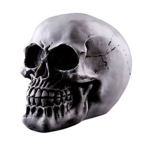 Homosapiens Replica Realistic Human Skull Gothic Halloween decor Ornament #2