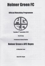 Holmer Green v Afc Hayes - Fa Cup Preliminary Round Replay - 02/09/14