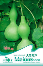 1 Pack 5 Spoon Shape Bottle Gourd Seeds Lagenaria Siceraria Organic B007