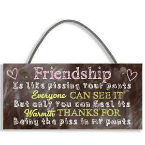 #1094 Best Friend Sign Friendship Gift Funny Thank You Novelty Birthday Plaque