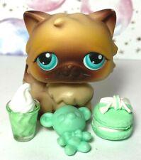 Authentic Littlest Pet Shop #22 Brown Persian Cat Teal Eyes Accs Lot Lps *Note