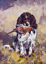 "Carl Rungius, Bird Dog, SPANIEL DICKEY WITH PHEASANT, Hunting, 14""x10"" ART"