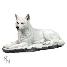 Nemesis Now - White Shadow Wolf - G0750C4 - BNIB