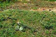 Model Scene Forest Base Grass Mat Earl Summer Scenery Landscape F602 RR Military